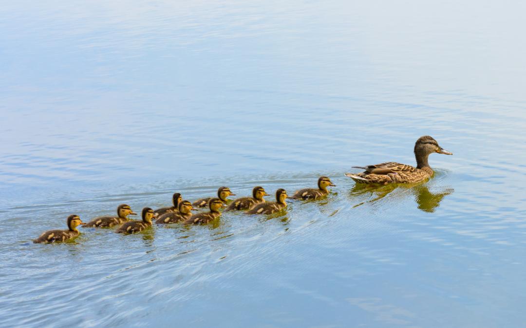 Family Mantras Shape How We Lead